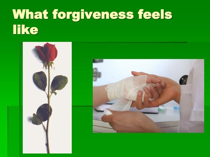 What forgiveness feels like