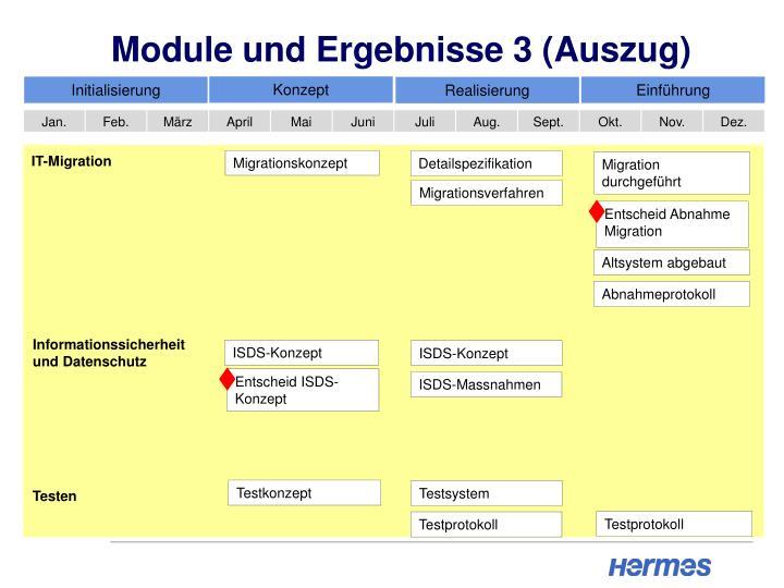 Module und Ergebnisse 3 (Auszug)