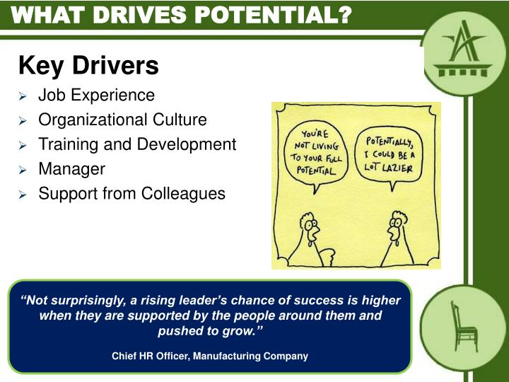 What drives potential?