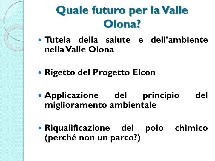 Quale futuro per la Valle Olona?