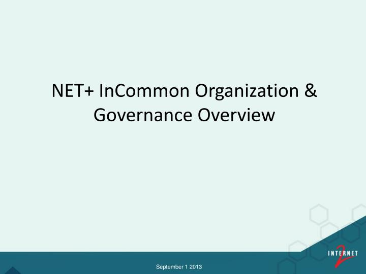 Net incommon organization governance overview