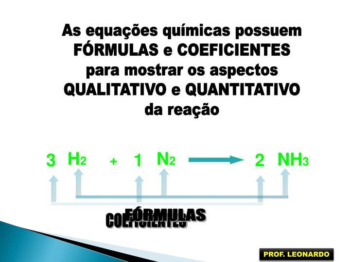 As equações químicas possuem