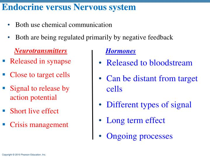 Endocrine versus Nervous system