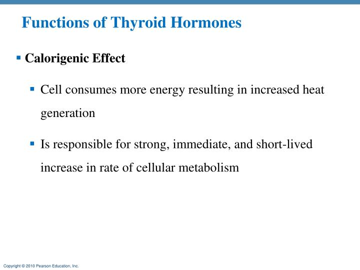 Functions of Thyroid Hormones