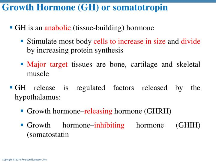 Growth Hormone (GH) or