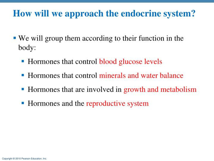 How will we approach the endocrine system?