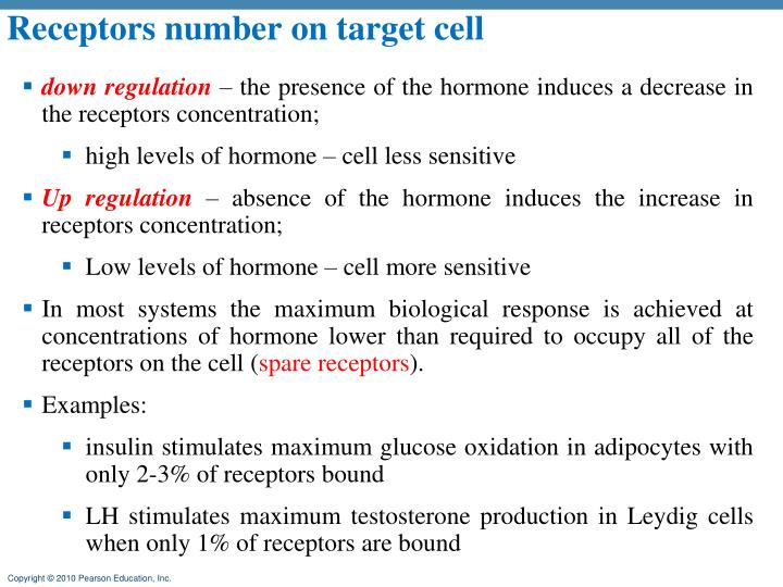 Receptors number on target cell