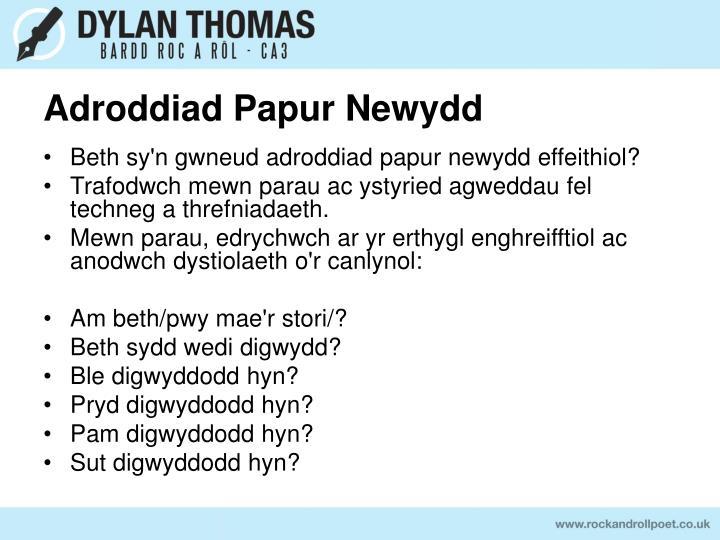 Adroddiad Papur Newydd