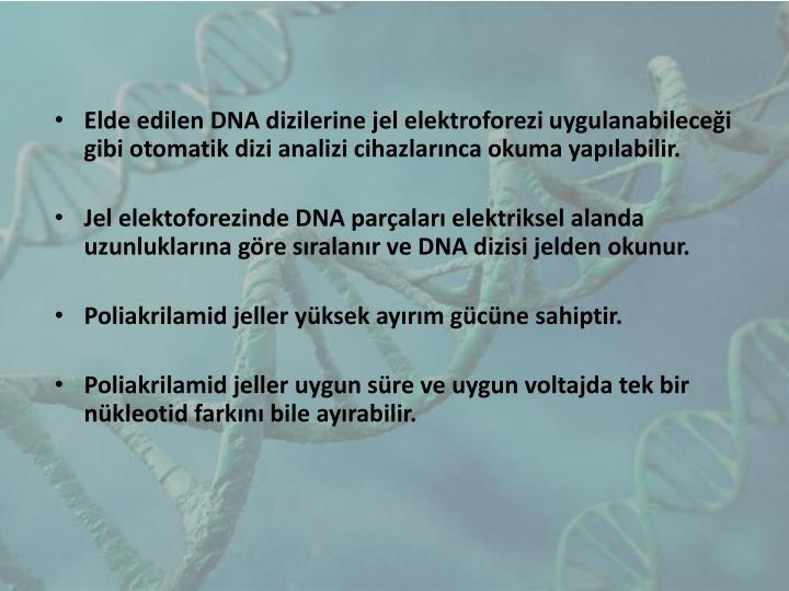 Elde edilen DNA dizilerine jel
