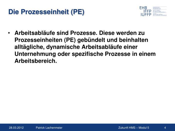 Die Prozesseinheit (PE)