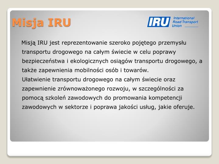 Misją IRU jest reprezentowanie szeroko pojętego przemysłu transportu drogowego na całym świecie w celu poprawy bezpieczeństwa i ekologicznych osiągów transportu drogowego, a także zapewnienia mobilności osób i towarów.