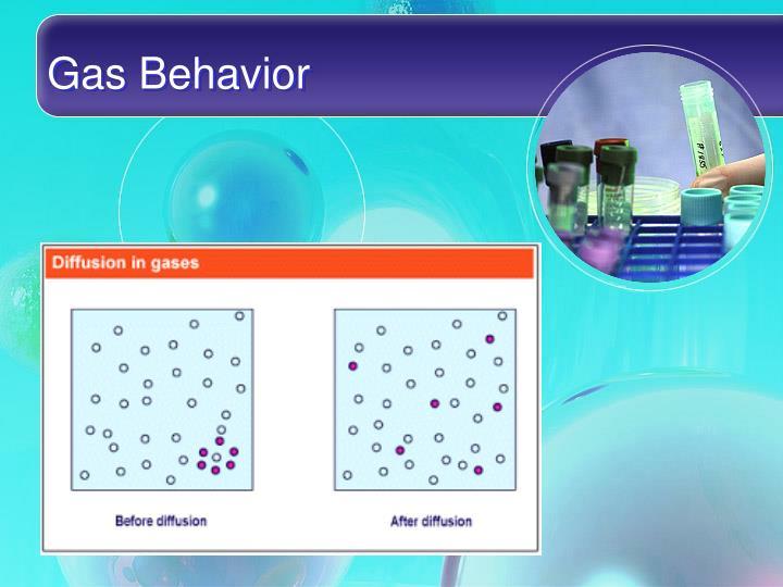 Gas Behavior