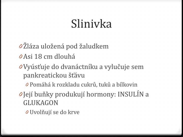Slinivka