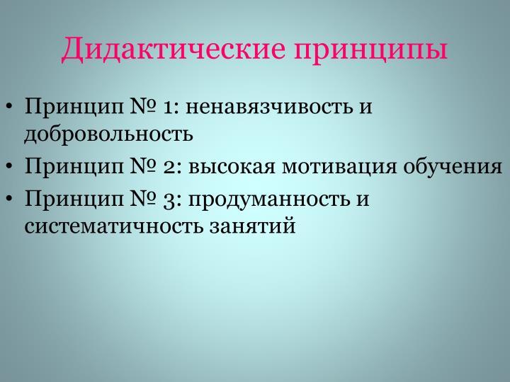Дидактические принципы