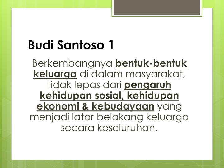 Budi Santoso 1