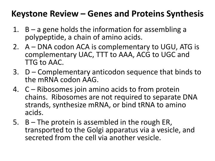 Keystone review genes and proteins synthesis