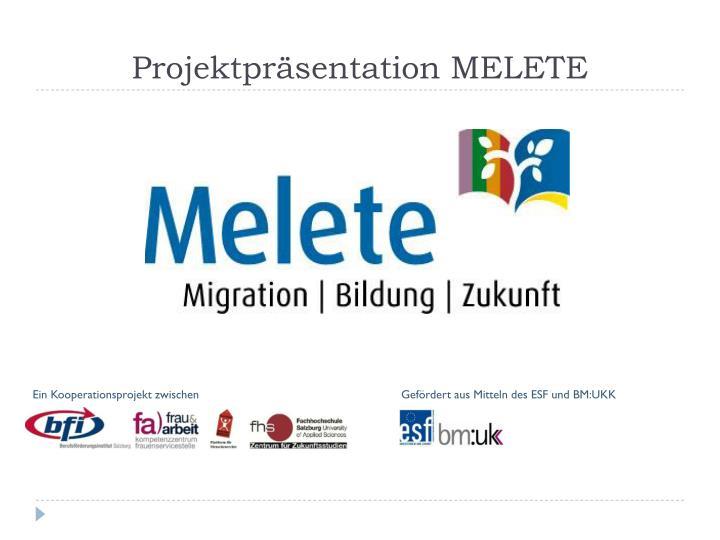 Projektpräsentation MELETE
