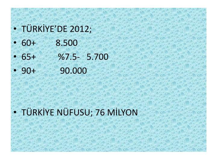 TÜRKİYE'DE 2012;