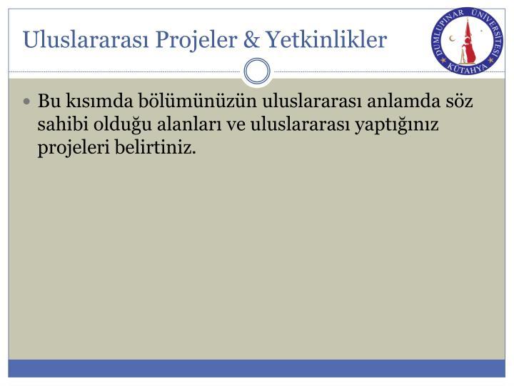 Uluslararası Projeler & Yetkinlikler