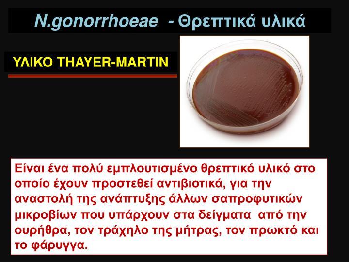 N.gonorrhoeae