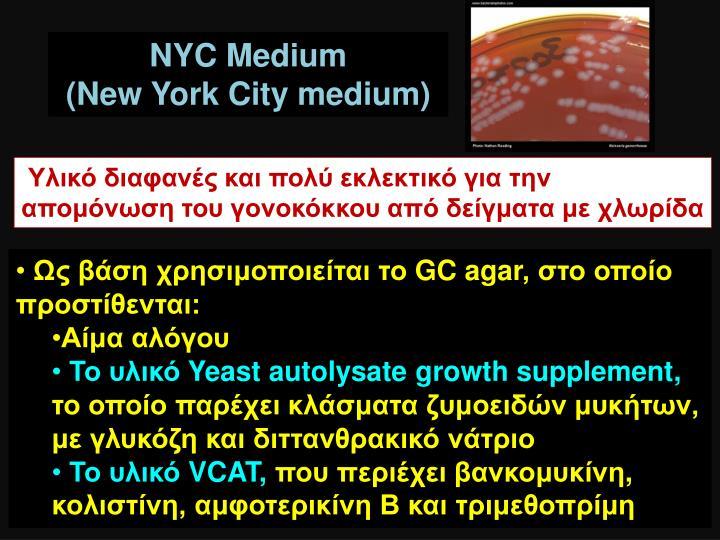 NYC Medium