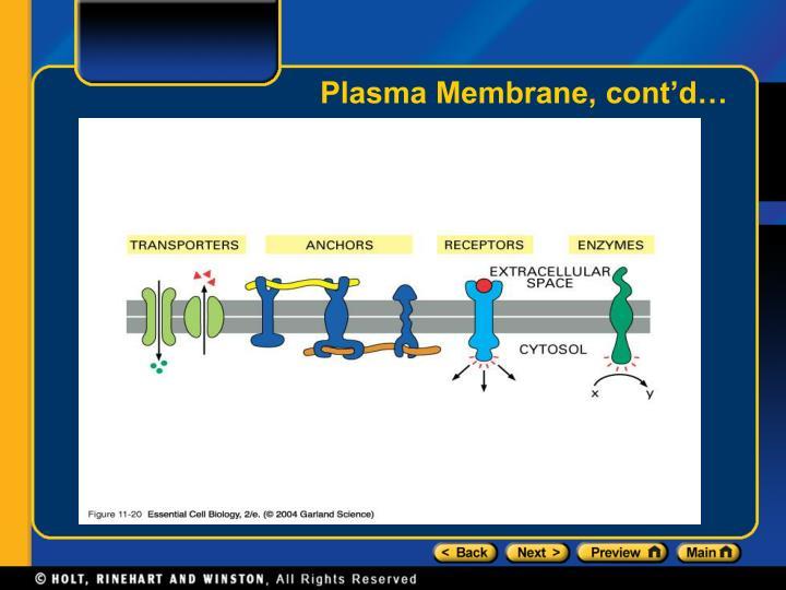 Plasma Membrane, cont'd…