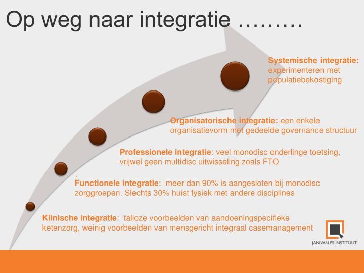 Systemische integratie