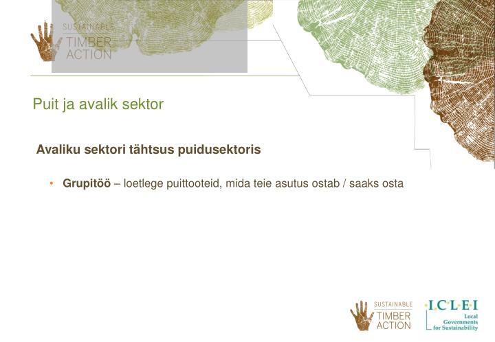 Puit ja avalik sektor