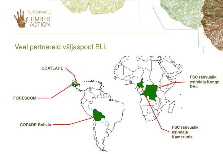 Veel partnereid väljaspool ELi
