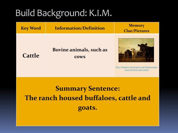 Build Background: K.I.M.