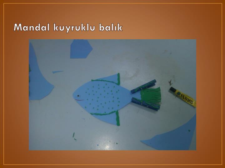 Mandal kuyruklu balık