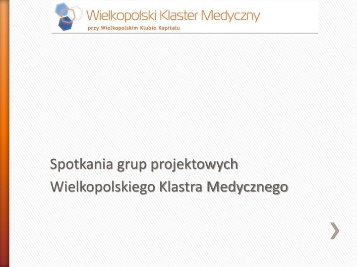 Spotkania grup projektowych