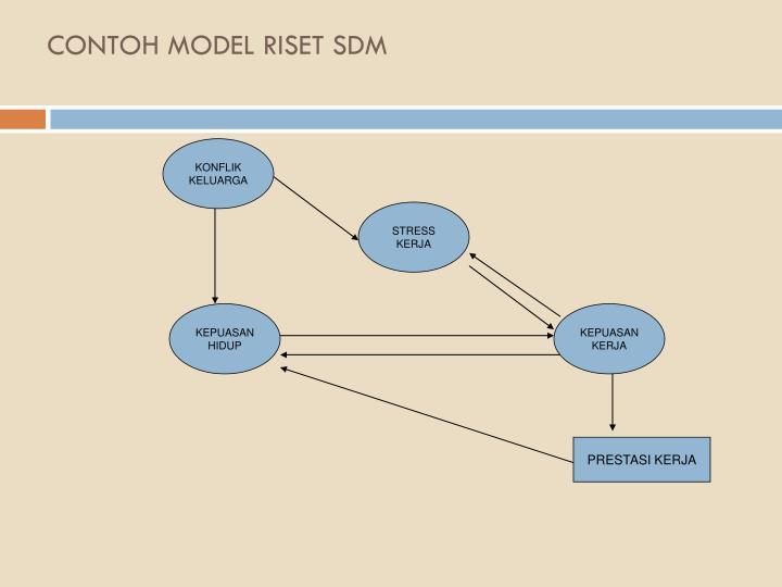 CONTOH MODEL RISET SDM