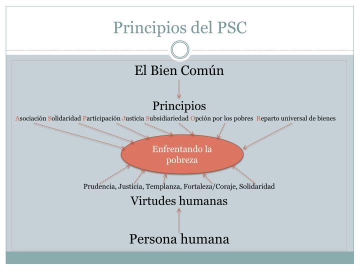 Principios del PSC