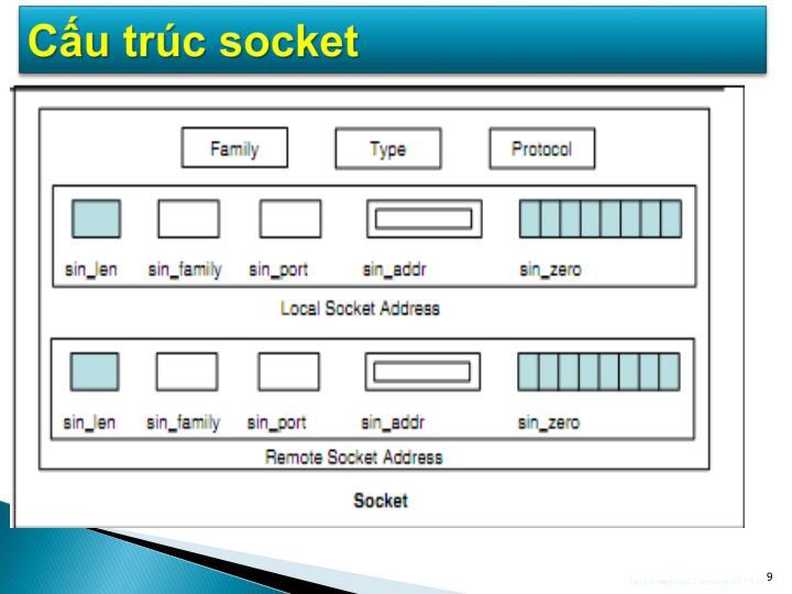 Cấu trúc socket
