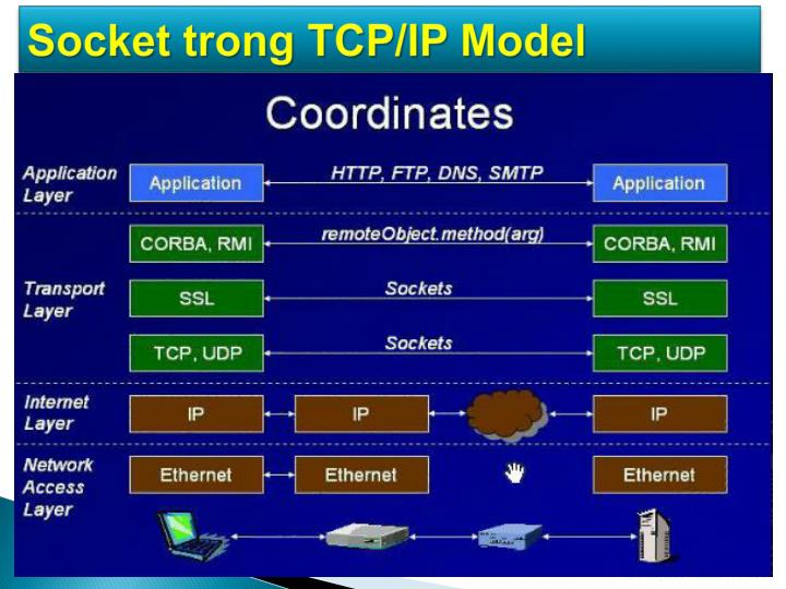 Socket trong TCP/IP Model