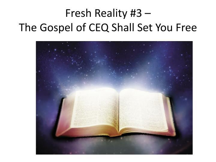 Fresh Reality #3 –