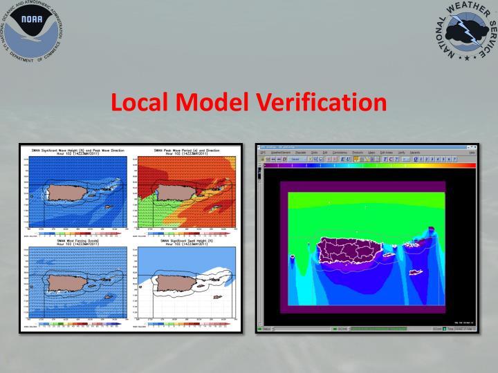 Local Model Verification