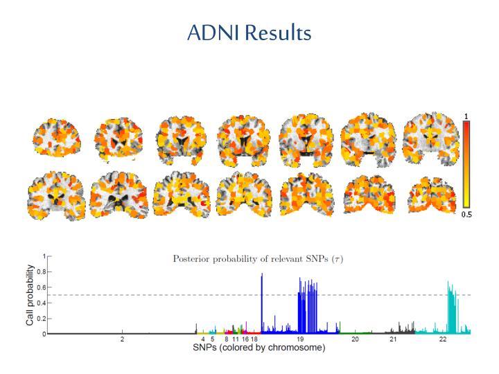 ADNI Results