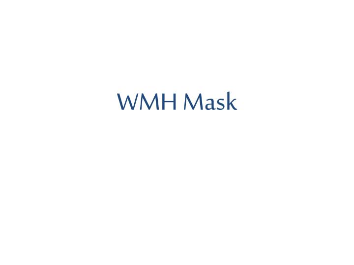 WMH Mask