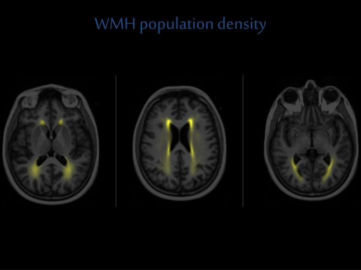 WMH population density