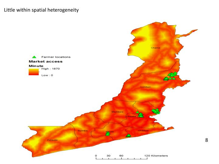 Little within spatial heterogeneity