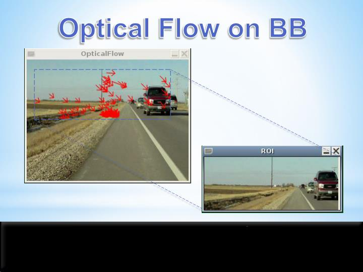 Optical Flow on BB