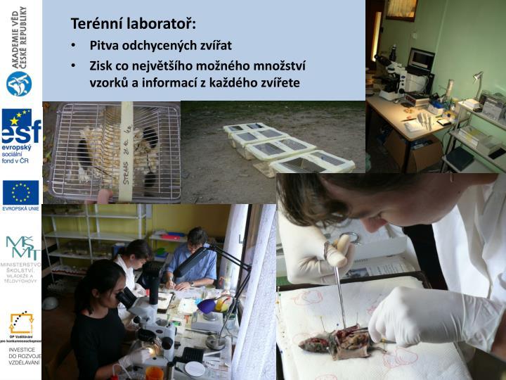Terénní laboratoř: