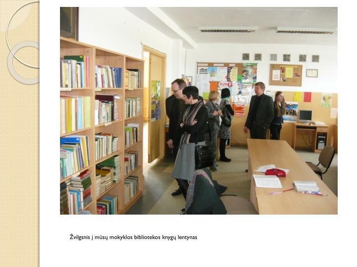 Žvilgsnis į mūsų mokyklos bibliotekos knygų lentynas