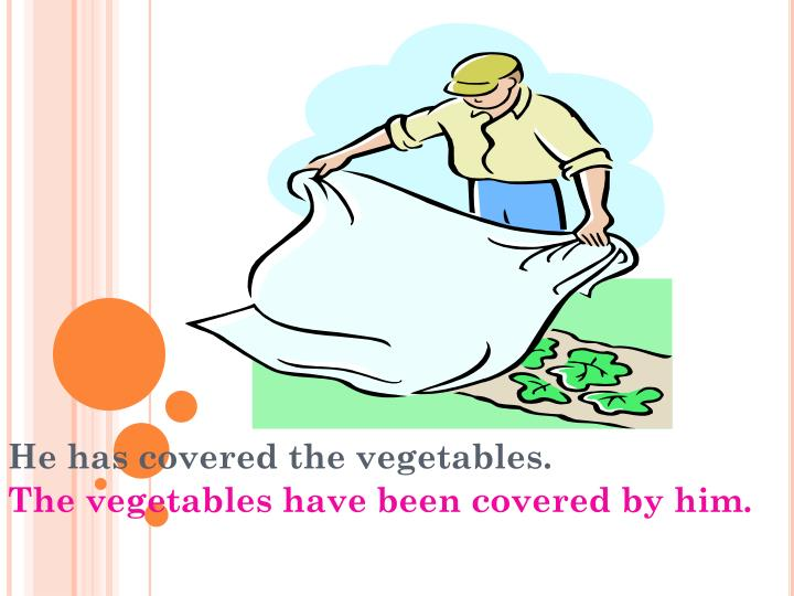 He has covered the vegetables.