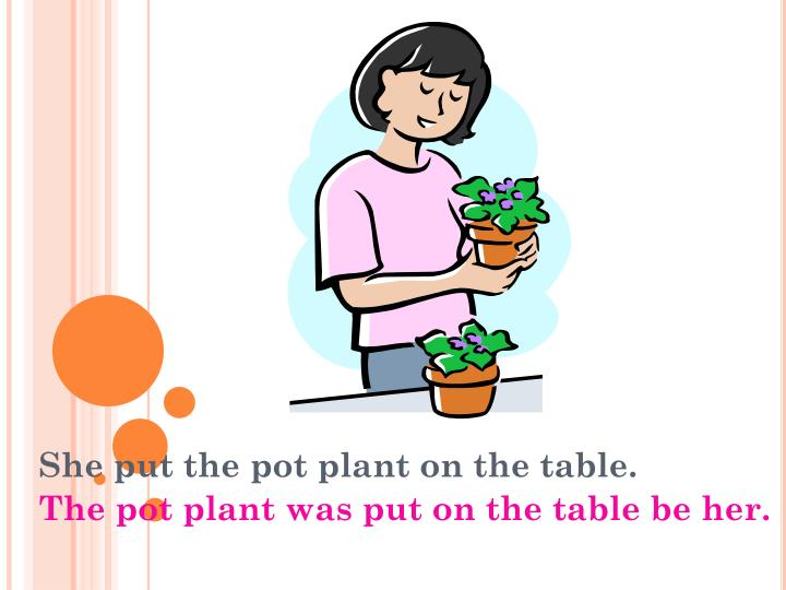 She put the pot plant on the table.