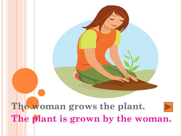 The woman grows the plant.