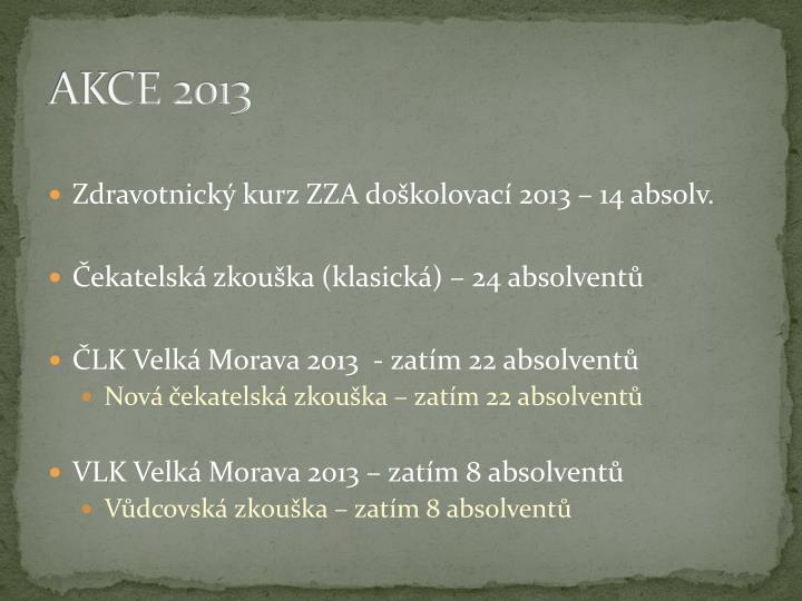 AKCE 2013