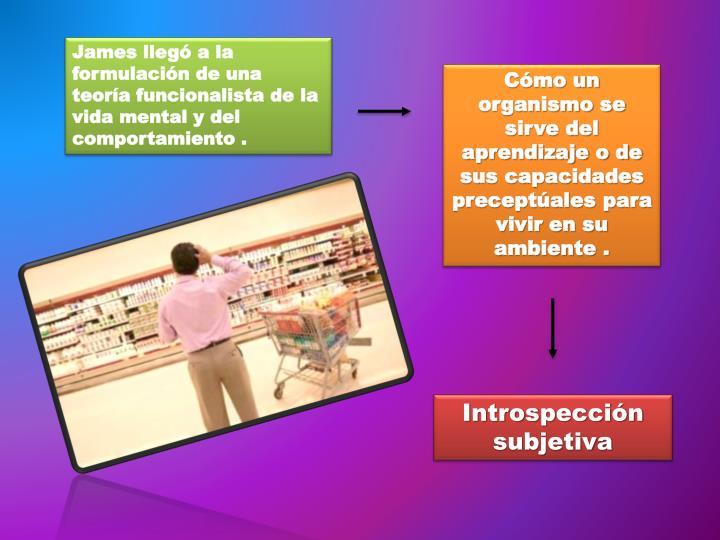 James llegó a la formulación de una teoría funcionalista de la vida mental y del comportamiento